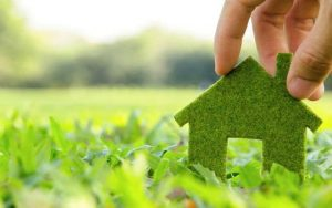 renewable-green-energy_content